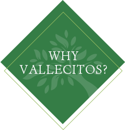 why-vallecitos-portal